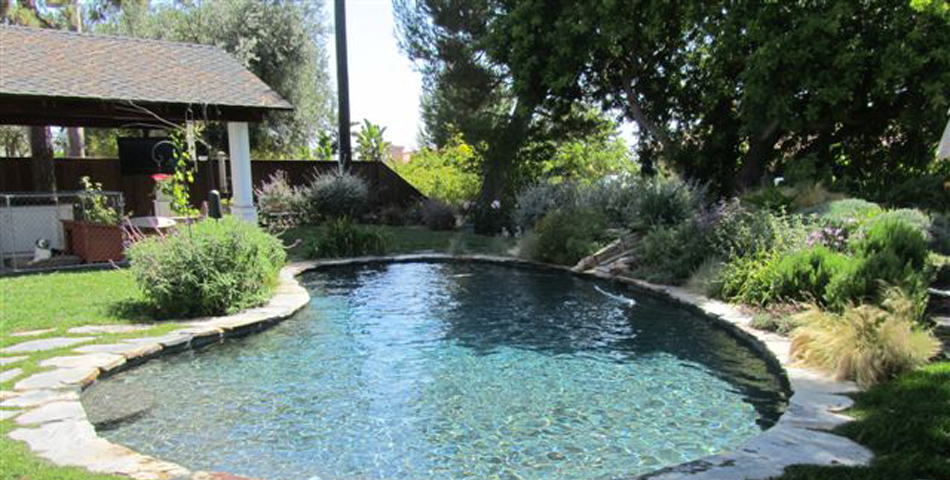 Pool Replaster and Remodel  - Golden Meadow Project # 2