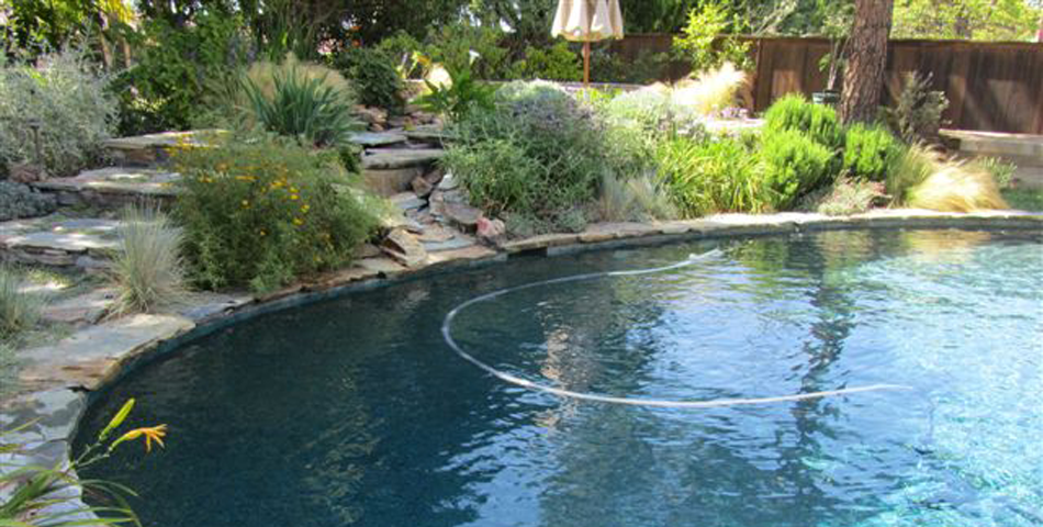 Pool Replaster and Remodel  - Golden Meadow Project #4